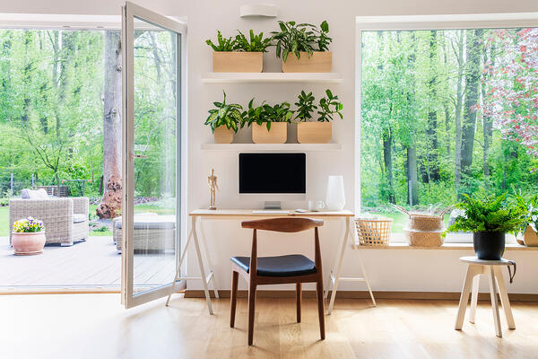 Airy room with natural lighting and plants